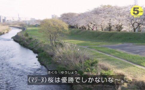 ゼンカイジャー12回(1)